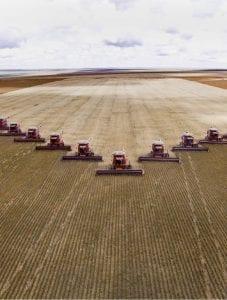 Erntemaschinen bei der Soja-Ernte im brasilianischen Bundesstaat Mato Grosso